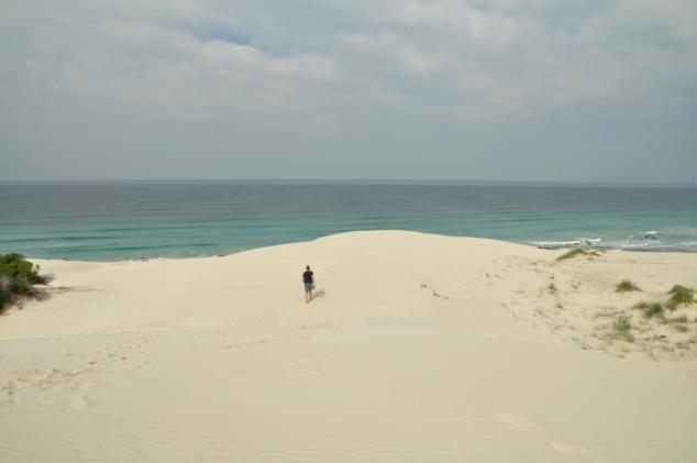 Sand dunes De Hoop