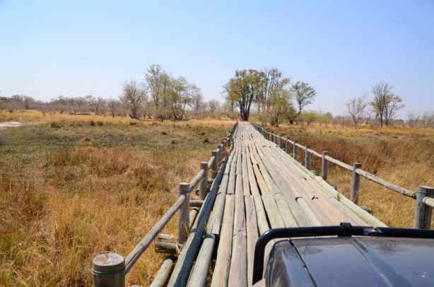 Log bridges in Moremi
