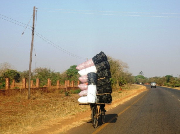 How many bags of coal can you carry on your bike?