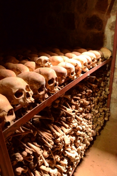 Just a few of the many human remains in the mass grave